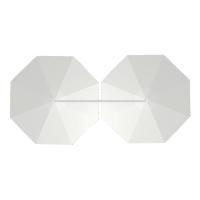 Dual Octagon
